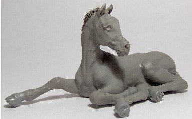 arab-foal-383.jpg
